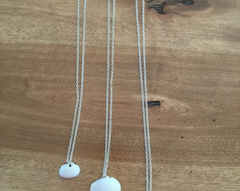 Simple White Seashell Necklace