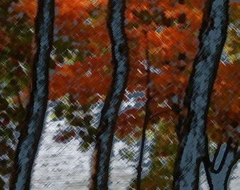 reservoir trees