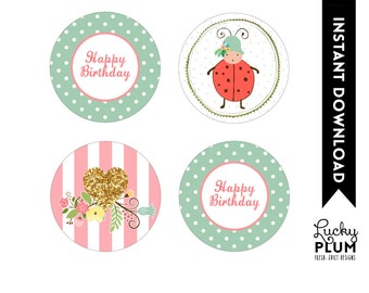 Ladybug Cupcake Toppers / Lovebug Cupcake Toppers / Ladybird Cupcake Toppers / Ladybug Label / Lovebug Label
