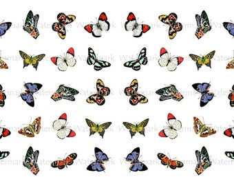 Butterfly Water-Slide Decals, Decorate Flame-less Candles, Soap, Glass, Home Decor, Furniture, Magnets, Jewelry, Craft Projects, Scrapbooks
