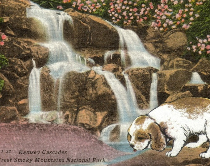 One of a Kind Dog Art Collage, Vintage Great Smoky Mountains Postcard