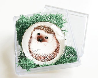 Hedgehog Gift Box with Magnet - Hedgehog Watercolor Art Magnet - Comes Gift Packaged in Acrylic Box and Moss!