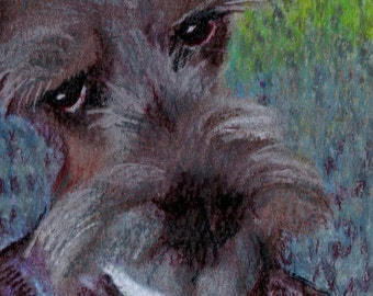 original art drawing aceo card Van Gogh schnauzer dog self portrait anthropomorphic animals in clothes