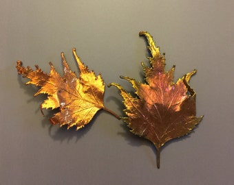 2 Copper Dipped Real Leaves, for Jewelry, Fall Decor, Art Supply