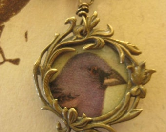 grosbeak ~ antique bird illustration French photo locket gemstone necklace