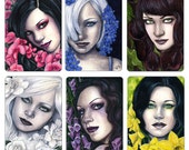 Garden Series Limited Edition ACEO Print Artist Trading Cards ATC Flowers Fantasy Art Portrait Colorful Ivy Lilies - Set or Individually