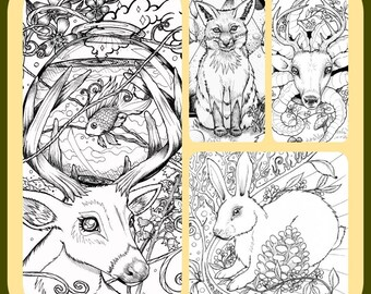 Forest Creatures Bundle 4 Adult Coloring Book Pages Instant Download Digital Files