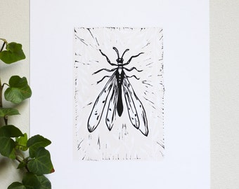 "Insect Relief Linocut Print • Hand Pulled Fine Art • 4"" x 6"" Wall Art"
