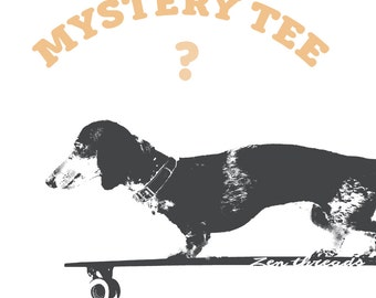 Women's MYSTERY TEE! (ships free with another item)