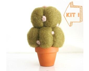 Cactus Needle Felting Kit Beginner - Needle Felted Cactus Kit - Starter Kit - DIY Plant Kit - DIY Craft Kit - DIY Home Decor
