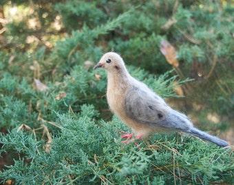 Mourning Dove Needle felted