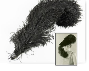 """Antique Vintage Black Ostrich plume feather hat accessory willow 20"""""""