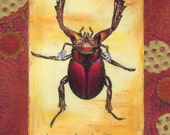 Mangler Beetle Print by Vandy Hall, matted, numbered, signed