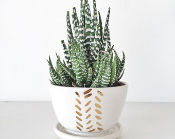 succulent planter Terrarium garden home decor Handmade ceramic planter garden in white and gold succulent pot