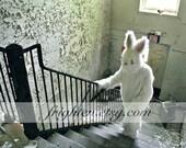 Rabbit Art Print, Creepy Bunny, Urban Decay, Photography Print, Rabbit Costume Art, Anthropomorphic, 8x10 Print