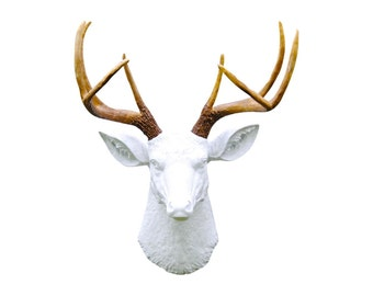 Deer Head Wall Mount - White and Brown - Deer Head Antlers Faux Taxidermy D0100