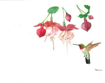 Hummingbird Original Painting