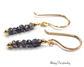 Iolite and 14K Goldfill Handcrafted Earrings