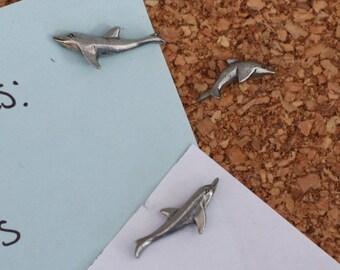 Dolphin Pushpins