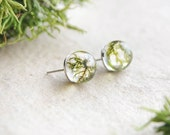 Real moss stud earrings - Unusual resin jewellry for nature lovers - 925 Sterling silver studs