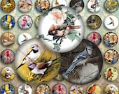 BIRDS - Digital Collage Sheet 20mm Circles Printable Images ChikUna Art for Pendants, Magnets, round Bezels, Bottle caps