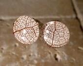 Skeleton leaf of Salal Stud Earrings, woodland jewelry, leaf jewellery, plant, forest, nature, rustic, Surgical steel