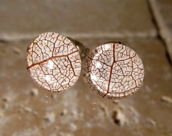 Skeleton leaf of Salal Stud Earrings, woodland jewelry, leaf jewellery, plant, forest, nature, rustic, Surgical steel