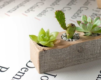 Succulent planter - Planter branch -Wedding decor - Small wooden planter - 3 planter plants .
