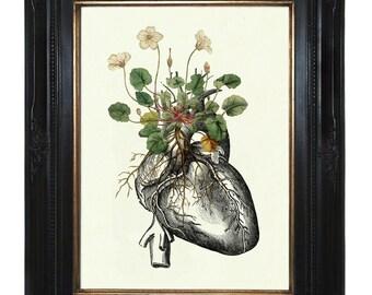 Flowers Art Print growing on Anatomical Heart Art Print Botany Love Valentine's Day Gothic Victorian Steampunk Art Print Botanical