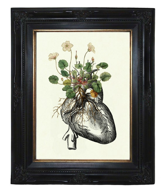 Flowers growing on Anatomical Heart Love - Victorian Steampunk art print