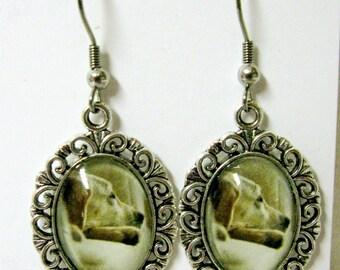 Sleeping Yellow labrador earrings - DAP07-121