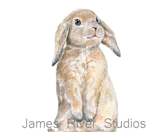 Bunny Painting Bunny Print. Bunny Watercolor Bunny Art Bunny Rabbit Art Rabbit Painting Rabbit Print Bunny Poster Bunny Wall Art Bunny Decor