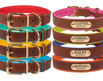 Brass Buckle Leather Dog Collar Optional Personalized Nameplate Laser Engraved Small Medium Large Soft Padded
