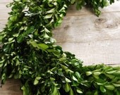 6 Foot BOXWOOD NATURAL PRESERVED Greenery Garland Table Centerpiece Archway Floral Green Decor Wedding Shower Ceremony Reception Arrangement