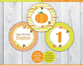 pumpkin birthday cupcake toppers / pumpkin cupcake toppers / pumpkin birthday decor / pumpkin birthday party / pumpkin birthday printable