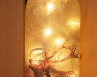 Rustic Lighted Wine Bottle