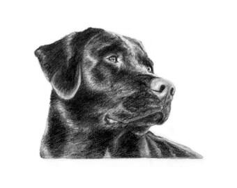 Custom Pet Portrait Dog Portrait Dog Art Gift Idea 5x7-Express Portrait