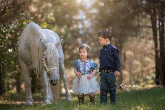 Flower Girl Dress, cowgirl dress, country wedding dress, toddler western dress, Denim cowgirl dress, Denim Toddler Girl Tutu Dress