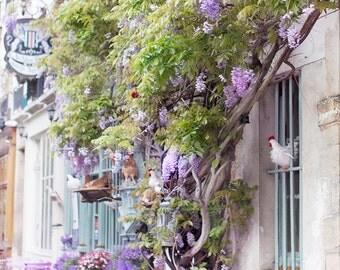 Paris Photography, Au Vieux Paris, Architecture Fine Art Photograph, Paris Decor, Large Wall Art, Urban Wall Decor