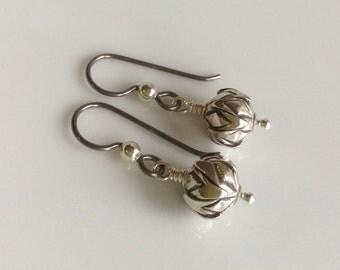 Fine Silver Earrings / Niobium Earrings / Hypo Allergenic Earrings / Small Dangle Earrings / Silver Dangles