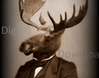 Mr. Moose Digital Download Photo