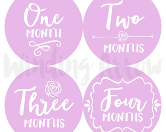 Baby Month Stickers Baby Girl Photo Prop Monthly Milestone Stickers First Year Belly Stickers 12 Months Lavender Purple Flowers Floral Roses