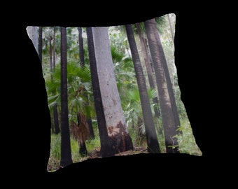 Trunks and Palms, Carnarvon Gorge