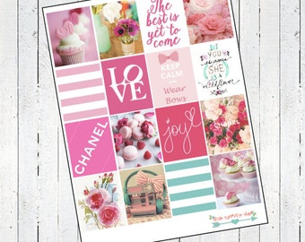 Girly and Pink Stidkers- For Erin Condren