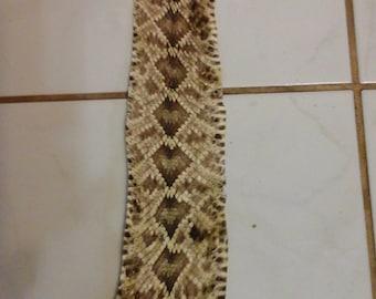 Rattle Snake Skin