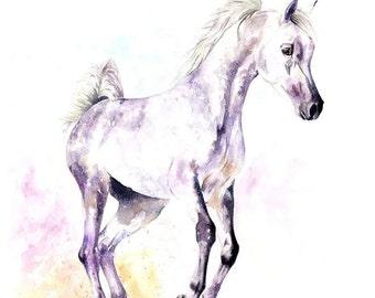 Framed Original piece  'اللون الأرجواني وثبة' arab horse contemporary painting