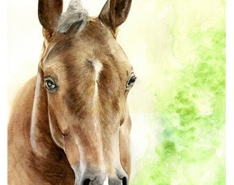 "Horse, foal, Watercolour horse painting original 20"" x 16"""