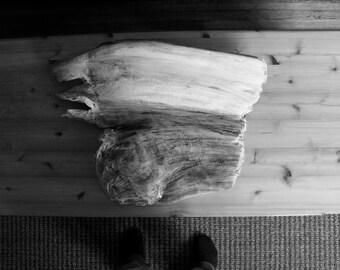 Driftwood Sculpture #2