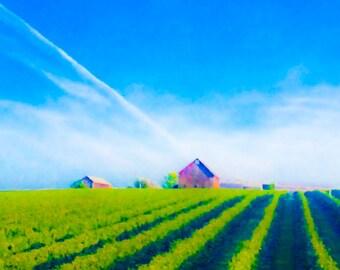 bright green farm