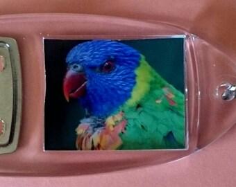 Rainbow Lorikeet Parrot - Bottle Opener Keyring/ Keychain